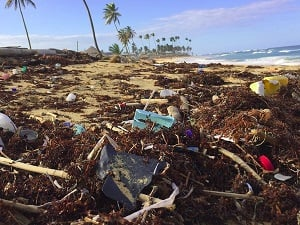 Unnecessary plastic packaging finds its way to our oceans - Photo by Dustan Woodhouse@Sunsplash