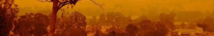 On the Australian Bushfires