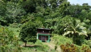 Ocean_View_Cottage_-_3_Rivers___Rosalie_Forest___Dominica_s_Original__Eco_Lodge-3-870x500