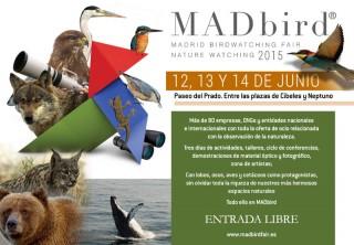 Madbird Fair 2015 (Madrid, Spain)