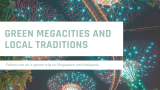 Between green megacities, learnings about sustainability and local traditions
