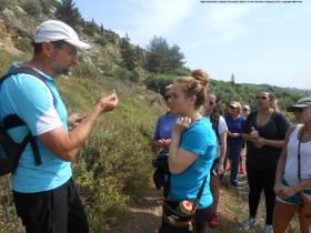 Highlights of Nikki Rose/Crete's Culinary Sanctuaries Study Tour in Crete, Greece