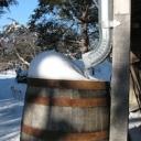 water saving rain barrels