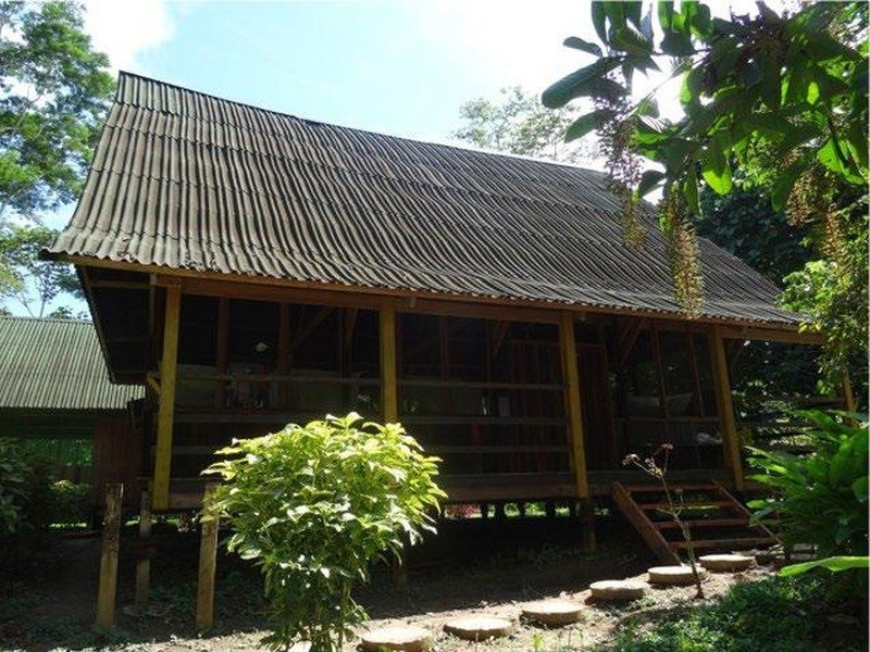 New listing at Ecoclub Tourism Realty: Sipapu Ecolodge, Madre de Dios, Peru https://ecoclub.com/sipapu-ecolodge-for-sale-peru