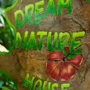 Dream Nature House