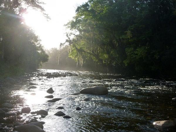 Take the trail through the primary rainforest