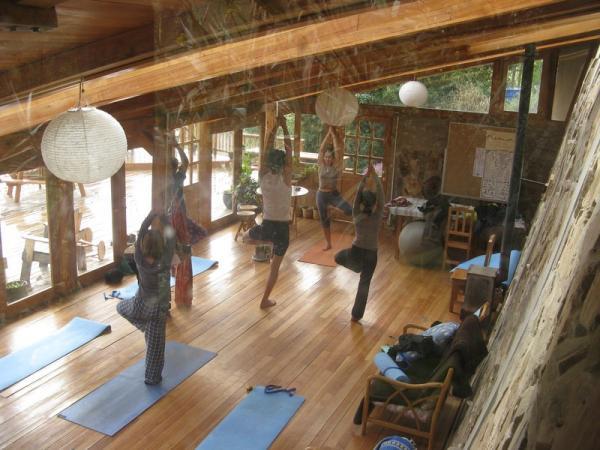 Yoga Poses inside Studio