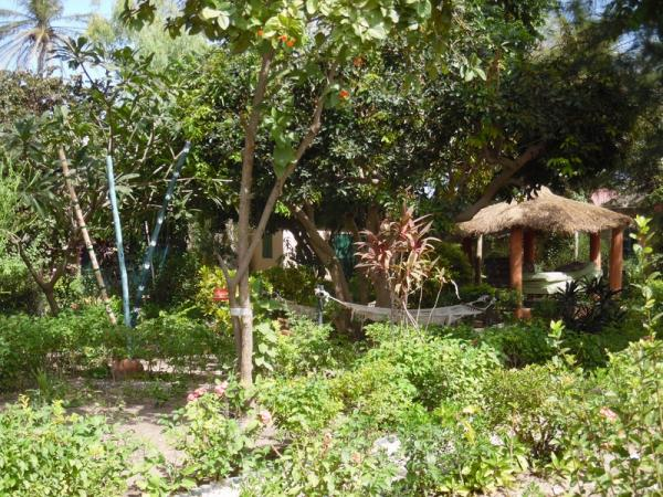 Grounds - For guests to relax in with lots of tree shade and bird life